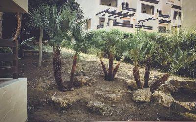 Pinsapo Garden acomete trabajos de limpieza de jardines en la Urbanización, El Campanario del Paraíso.