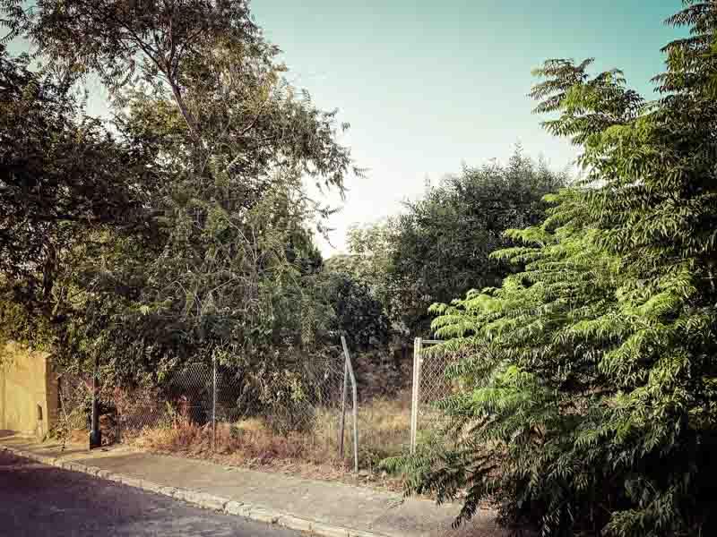 desbroce-benalmadena-pinsapo-garden